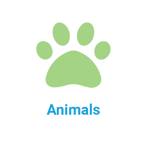 animals icon and title
